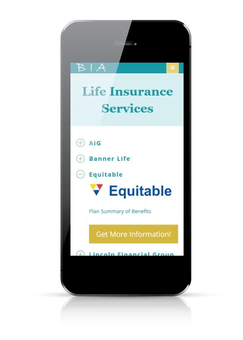 Boone Insurance Associates - web design